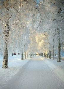 Sweden 2
